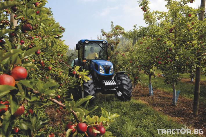 Трактори New Holland Т F/N/V 11 - Трактор БГ